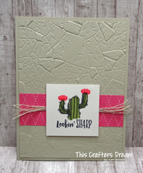 Witty cisms cactus loriskinner stampinup