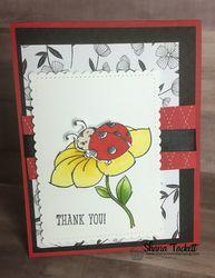Ladybug_and_flower