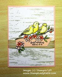 Bird ballad birch background
