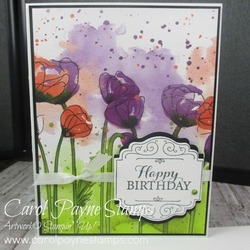 Stampin_up_layered_with_kindness_carolpaynestamps1