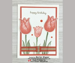 Happy birthday with timeless tulips