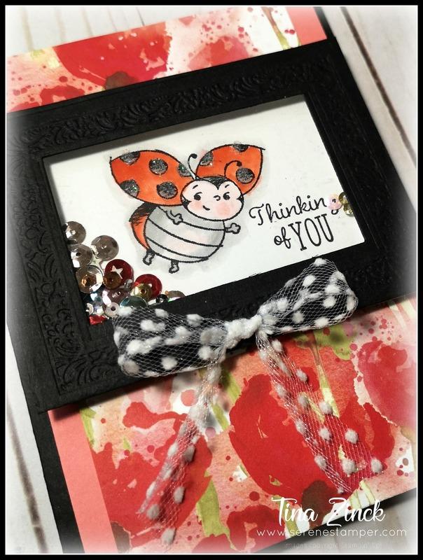 Little ladybug stampin up tina zinck shaker card