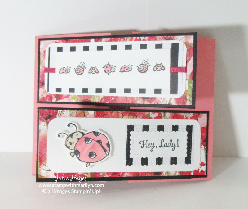 Ladybug cross fold w