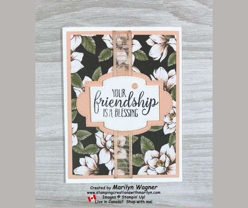 Friendship dsp 2