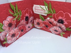 Peaceful poppies  9  3