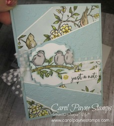 Stampin up starburst free as a bird carolpaynestamps2