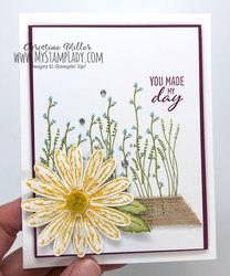 Shimmer daisy full