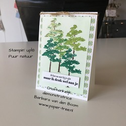 puurnatuur  stampinup  markers  1