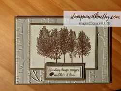 Winterwoodscard stampinup annettemcmillan 13052020