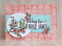 200513 bird paper hugs jai 505 1