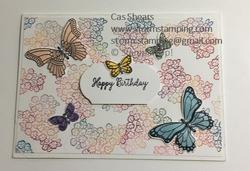 Butterfly gala babywipe