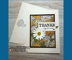 Ornate garden class   daisy   thanks