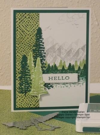 2020 mountain air shaded spruce