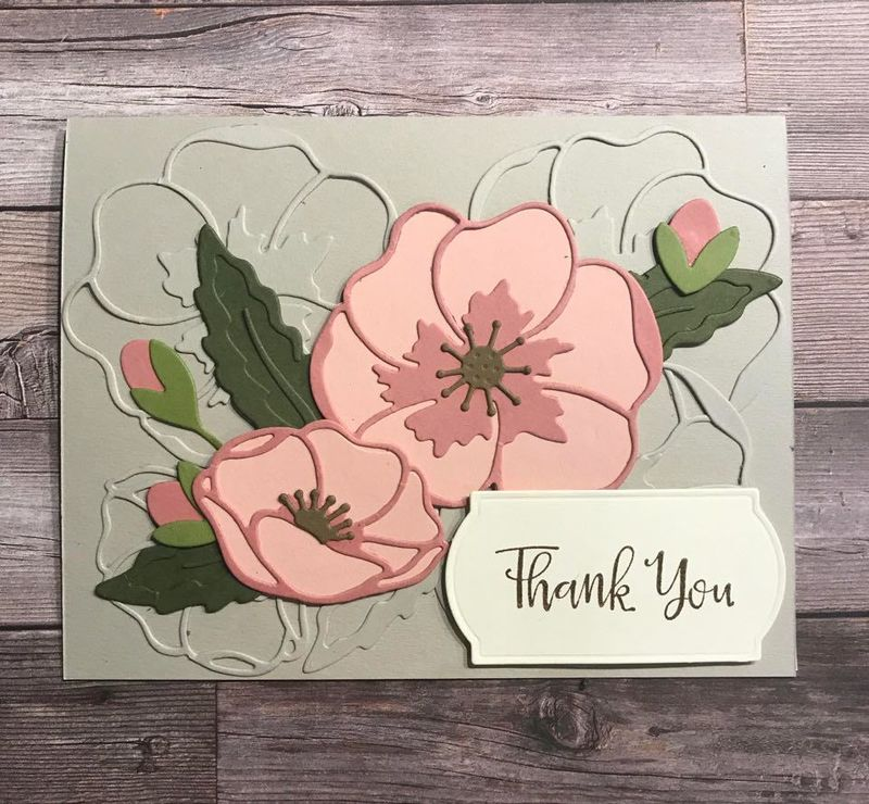 Painted poppies bundle thank you