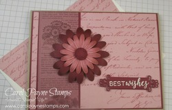 Stampin up pressed petals carolpaynestamps1