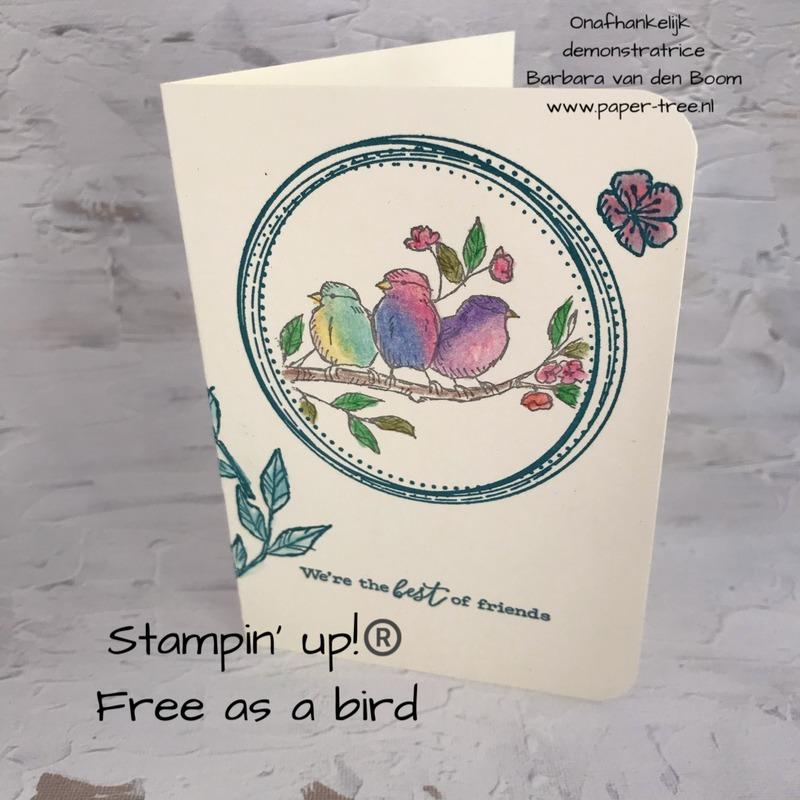 freeasabird  stampinup  4