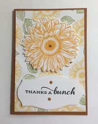 Sunflower ty