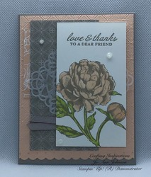 Stampin up peony gardern suite
