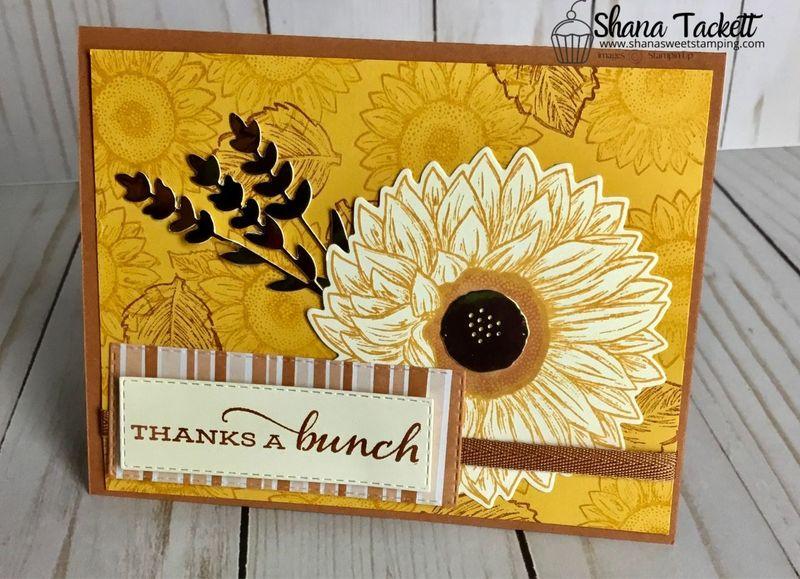 Celebrate sunflower swap