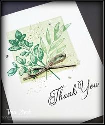 Forever fern one layer card tina zinck