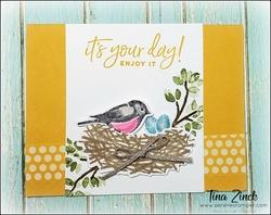 Birds and branches stampin up tina zinck