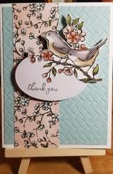 Bird thanks