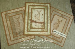 Stampin up natures beauty carolpaynestamps1