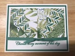 Sunburst card with forever greenery dsp