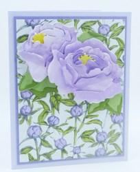 Peony lavender