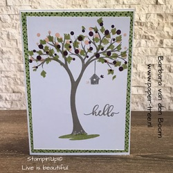 lifeisbeautiful  stampinup  3