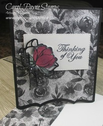 Stampin up good morning magnolia carolpaynestamps1