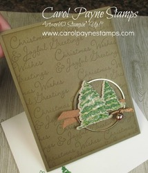 Stampin up snow wonder carolpaynestamps2