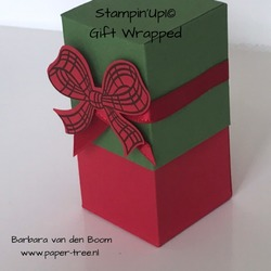 giftwrapped  stampiup  3