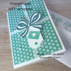 giftwrapped  stampinup  12