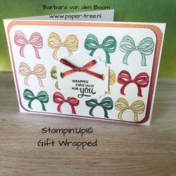 giftwrapped  stampiup  1