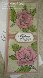 Stampin up good morning magnolia slim carolpaynestamps1