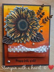 Autum sunflower