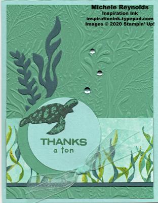 Whale done seaweed turtle watermark