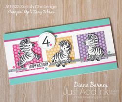 200905 jai 522 zany zebra birthday 3