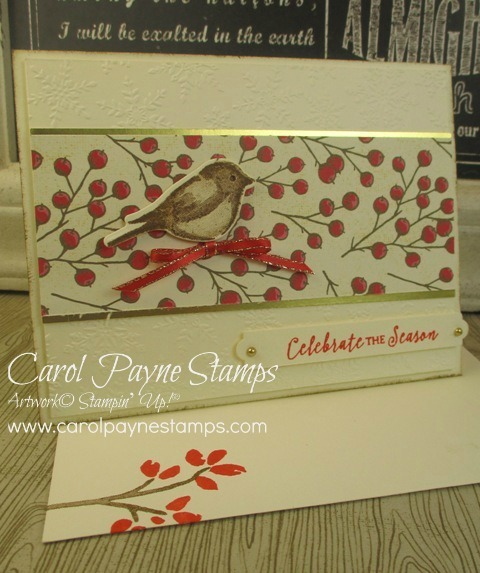 Stampin up birds   branches carolpaynestamps1