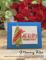 Merry christmas wishes christmas card