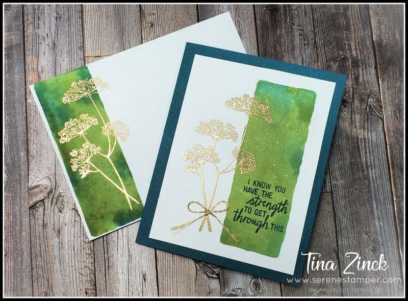 Queen anne s lace stampin up tina zinck
