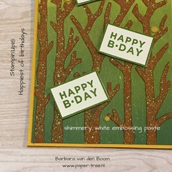 happiestofbirthdays  stampinup  1