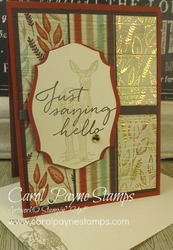 Stampin up tasteful touches carolpaynestamps1