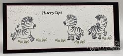 Zany zebra1