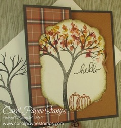 Stampin up life is beautiful carolpaynestamps2