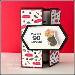 Playful pets wobble card front  1