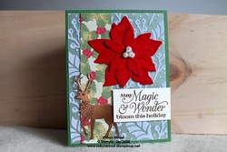 Red velvet poinsettia embossed horizontal