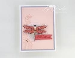 Dragonfly garden 002