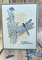 Dragonfly garden1